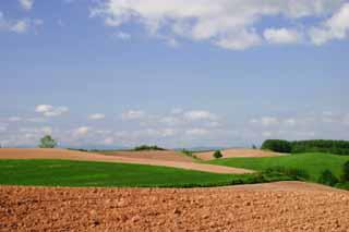 קרקע חקלאית בבעלות פרטית בתוספת פוטנציאל
